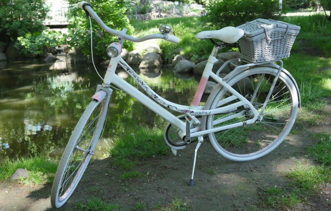 ręcznie malowany rower